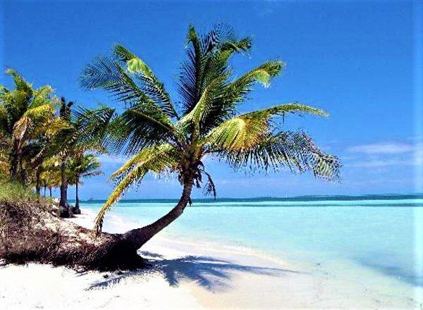 Metà novembre: Cuba si prepara a riaprire al turismo internazionale