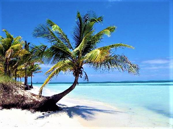 Spiaggia caraibica a CUBA